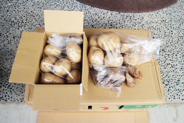 令和2年12月のアグリ便「有機栽培の新じゃがいもと里芋」